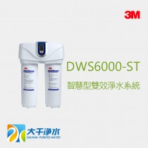 3M DWS6000-ST 智慧型雙效軟水系統